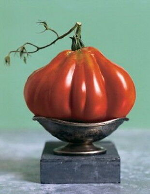 TOMATO CHARLIE CHAPLIN (30 SEEDS) HEIRLOOM - Juicy and very flavorful!