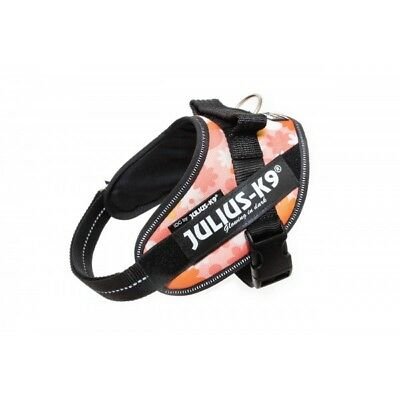 Julius-K9 IDC Powerharness - Size Mini - Pink with Flowers