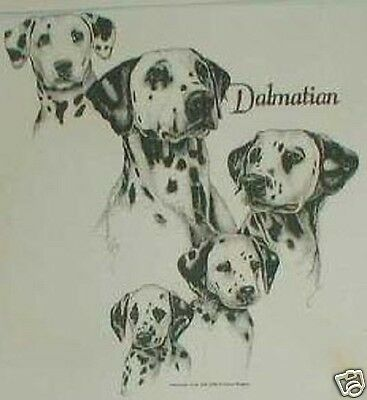 Dalmatian Ash Gray, Sand,Light blue, or Pink T-shirt. New! Your Size!