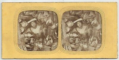 Tissue Stereoview Genre (Nice Duck, Sir?) London Still Life (J. Elliott) c 1860
