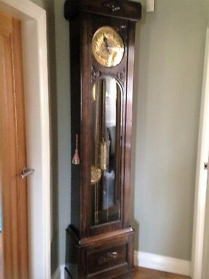 longcase clock with brass face and weights and Westminster Chimes