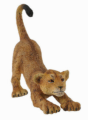 CollectA 88416 African Lion Cub Stretching - Realistic Wildlife Model - NIP