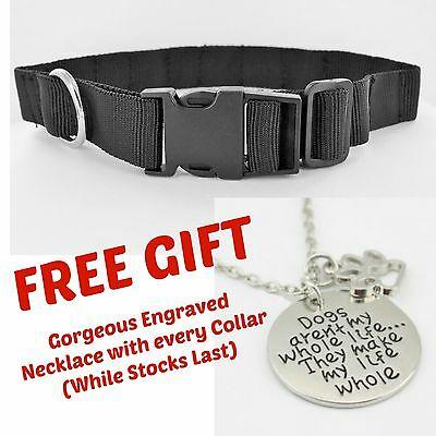 Bio HEALING DOG COLLAR 6 Strong Magnets for Arthritis / Pain Relief + FREE GIFT