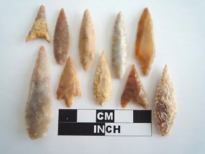 10 High Quality Neolithic Arrowheads - Genuine Saharan Artifacts - 4000BC (1114)