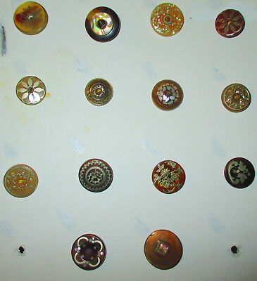 Collection Lot 14 Antique Horn Inlay Buttons - Mother Of Pearl Sterling Silver