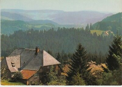 Germany (W) - View of Schwarzwald (Post Card) 1960's