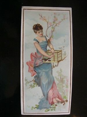 Victorian Trade Card 1800's Beautiful Lady Bird Cage Swallow   40