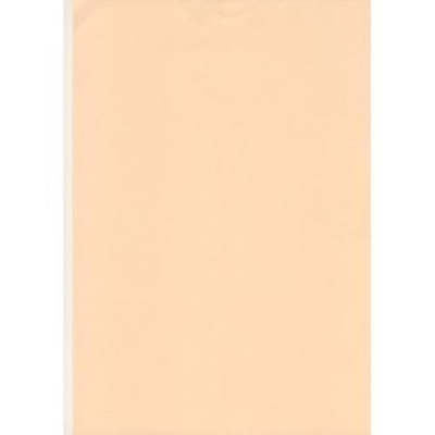 50 Sheets A4 Salmon / Pastel Peach 80Gsm Paper - Printer Copier Craft Office 20+