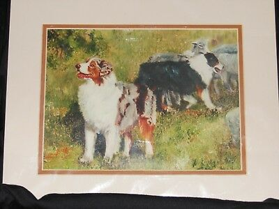 Australian Shepherd Limited Edition print signed by Ruth Hyatt Maystead