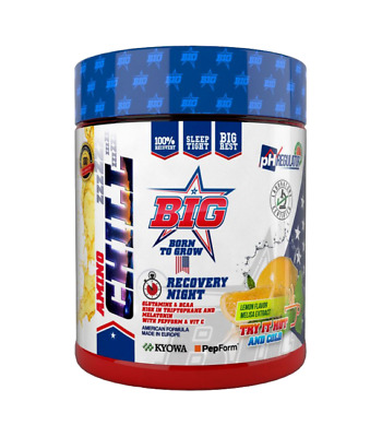 Big Aminochill Night Recovery 300 Gr