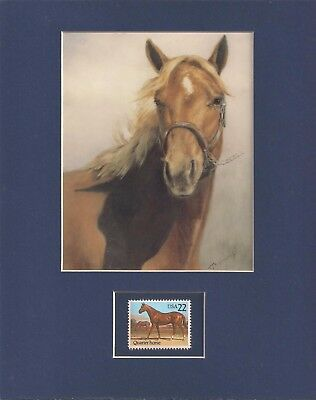 Beautiful Horse - Matted Art Print + Usps Postage Stamp - 0066