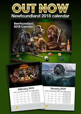 Newfoundland dog 2018 calendar (by Phil Barber)