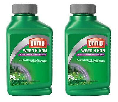 ORTHO 16-oz Weed B Gon Chickweed Clover & Oxalis Killer Conc 2 Pack Tank Sprayer