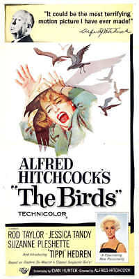 1963 THE BIRDS VINTAGE HITCHCOCK MOVIE POSTER PRINT STYLE B 36x18 9MIL PAPER