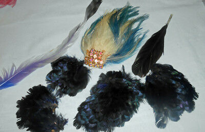 Vintage Various Feather Lot Victorian All Excellent Condition