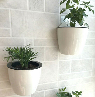 Self-watering Plant Flower Pot Wall Hanging Planter House Garden Wall-mounted