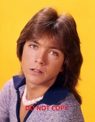DAVID CASSIDY POP STAR GLOSSY PHOTO PRINT A4 11.25 x 8.25 inches NEW PRINT A4