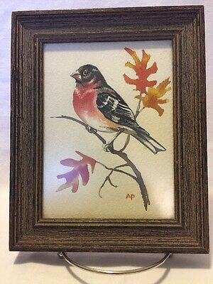 Vintage Watercolor painting of Robin on Oak branch signed