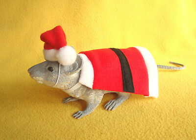 Santa Costume for Rat from Petrats