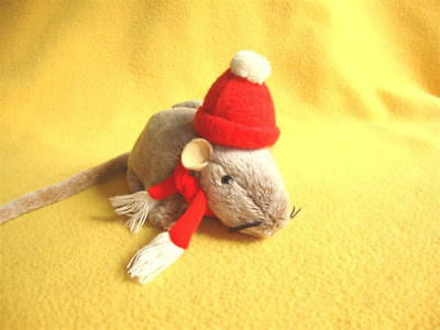 Large Red Winter Hat with Scarf for Rat from Petrats
