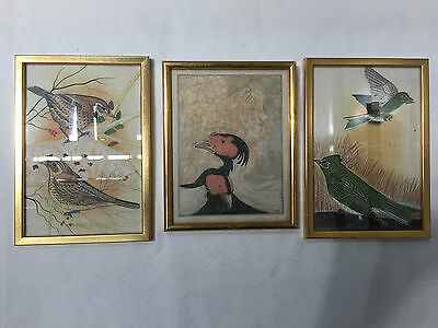 Lot Of 3 Bird Paintings And Print Framed In Gold Wooden Frames - Vr
