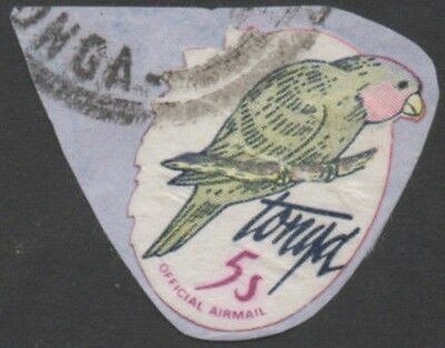 Tonga official 1981 SGO213 5s Blue-crowned Lory no foliage FU