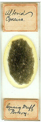 Altered Gneiss from Portsoy Scotland  Microscope Slide for Polariscope