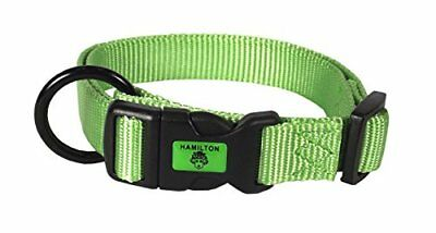 Hamilton 1-Inch Adjustable Dog Collar Large Fits 18-Inch by 26-Inch Lime Green