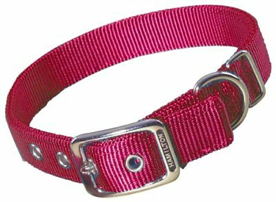 Hamilton Double Thick Nylon Deluxe Dog Collar 1-Inch by 30-Inch Red