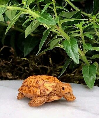 Miniature Dollhouse FAIRY GARDEN Accessories ~ Tiny African Tortoise ~ NEW