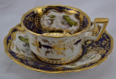 Soft Paste Paneled Ornately Decorated Cup and Saucer White Roses Stunning