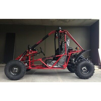 200cc Off-Road Buggy Coffs Harbour Race Cart Kart Go