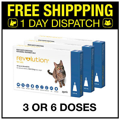 Revolution For Cats Flea Treatment - 3 or 6 Doses