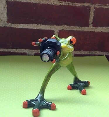 Frog with camera  NIB figurine