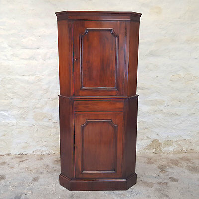 George III Style Mahogany Floor Standing Double Corner Cabinet (Georgian Antique