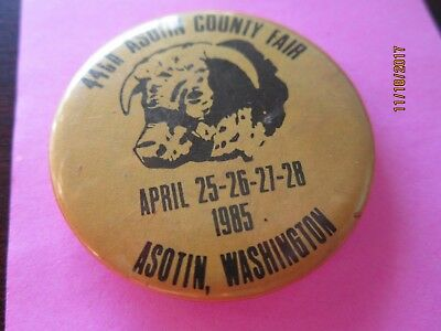 Vintage Button Pin 44nd ASOTIN COUNTY FAIR  Washington 1985 Bull Cow 1 3/4""