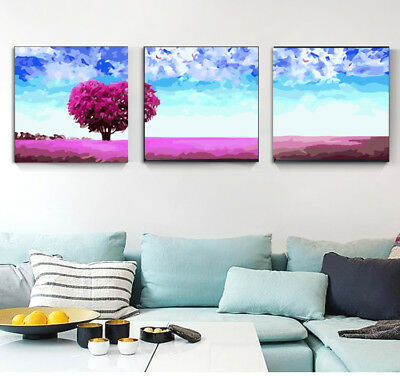 Set of Three Painting By Number Kit Canvas 3*40*50cm AU STOCK S2 DIY F3P033 AU