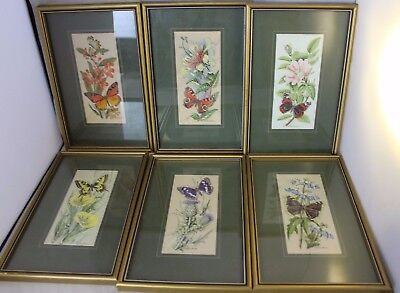 6 x Cash's Woven Pictures Framed Nature Themed ##DAC32RW