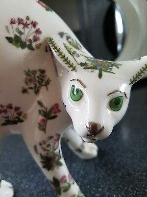 Rare Portmeirion Cool Katz by Paul Cardew Botanic Garden Cat