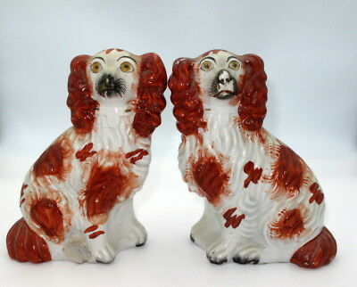 Antique Victorian pair of Staffordshire pottery figures of spaniel dogs