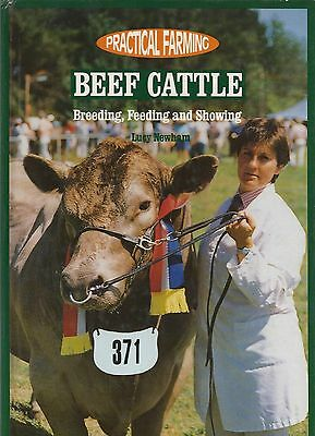BEEF CATTLE ~ Breeding Feeding and Showing ~ Practical Farming ~ Lucy Newham