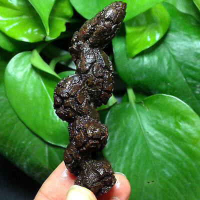 62g LARGE COPROLITE - DINOSAUR ERA DUNG POOP AUTHENTIC FOSSIL A16X02