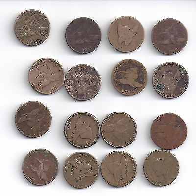 Lot of 16 - 1857 & 1858 Flying Eagle copper-nickel Cents ~ About Good Circulated
