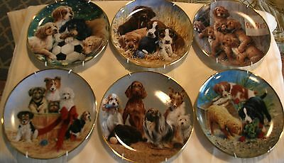Set of 6 ASPCA plates Franklin mint Soccer Basket of Cheer Triple trouble Puppy