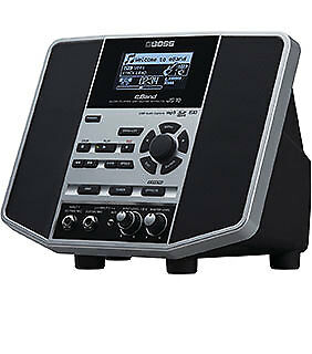 Roland Audio Player w/Guitar Effects