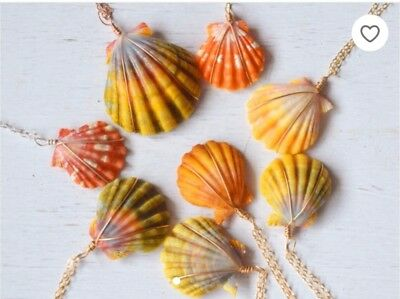 Custom Hawaiian sunrise shell necklace