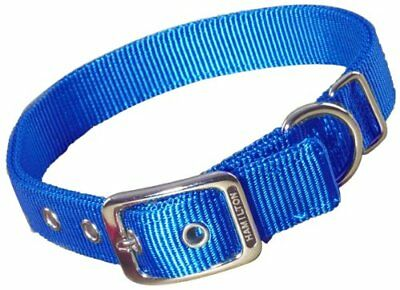 Hamilton Double Thick Nylon Deluxe Dog Collar 1-Inch by 22-Inch Blue