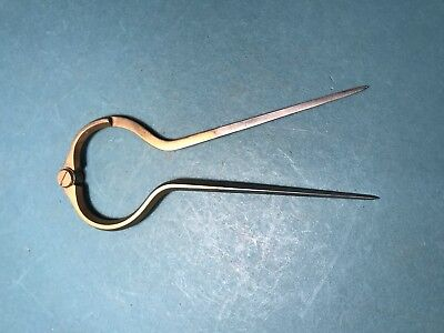 Pair Of Brass And Steel Dividers