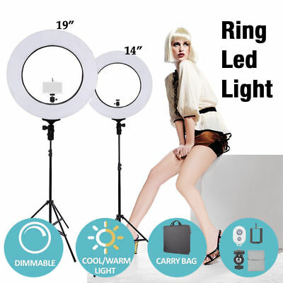 "14''/19"" 5500K Dimmable Diva LED Ring Light Diffuser MIRROR Stand Make Up Studio"