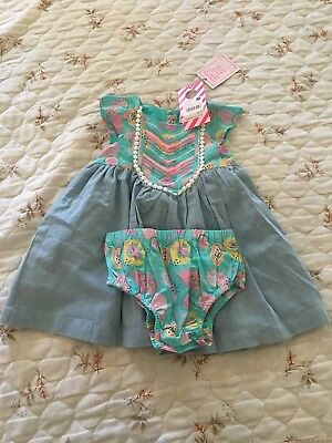 Pumpkin Patch Embroidered Dress with Knickers Size 6-12 months BNWT